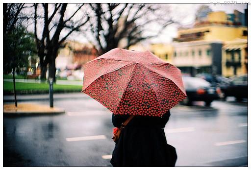 雨伞的英文怎么说?