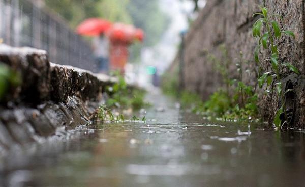 """""""雨水""""到 拜丈人 拉保保"""