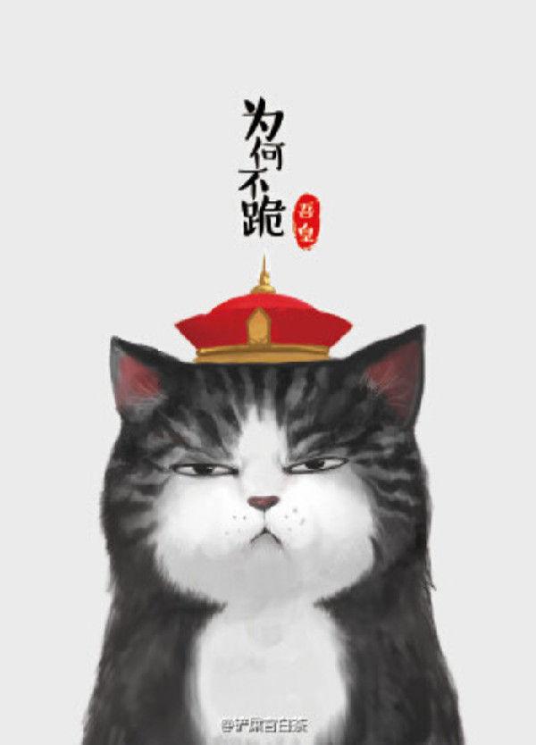 """""""吾皇猫""""走红:就喜欢你看不惯我又干不掉我的样子"""