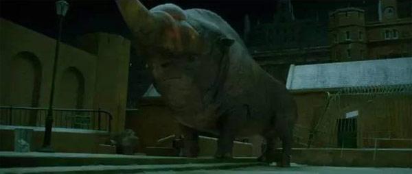 《神奇动物》里都有哪些神奇的动物?