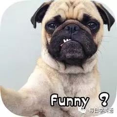 我可能学了假的funny......
