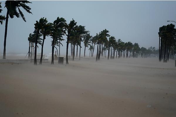 """飓风""""艾玛""""登陆佛罗里达州 超600万人撤离"""