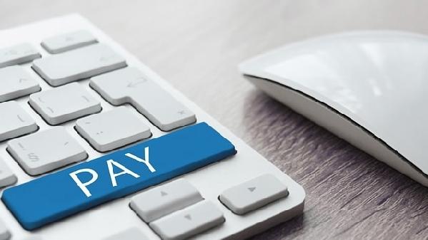 20余家支付机构接入网联平台
