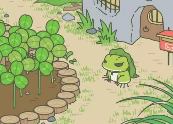 佛系90后掀起养蛙风:今天你的蛙儿子回家了吗?(附攻略)