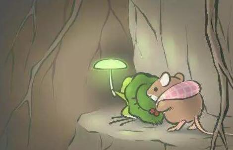 老外在中国:养蛙是一种怎样的体验