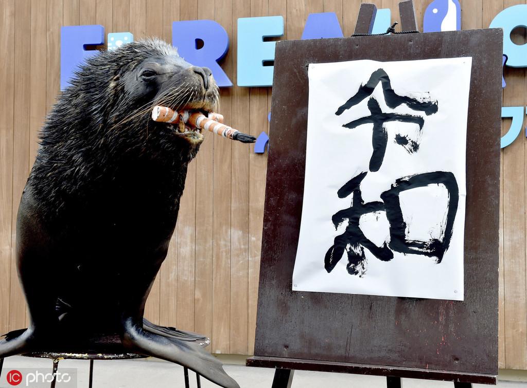 """日本新年号为""""令和"""" 5月1日启用"""