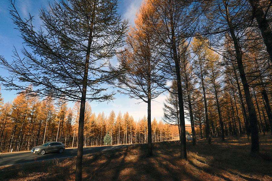 自然资源资产产权制度改革全面实施