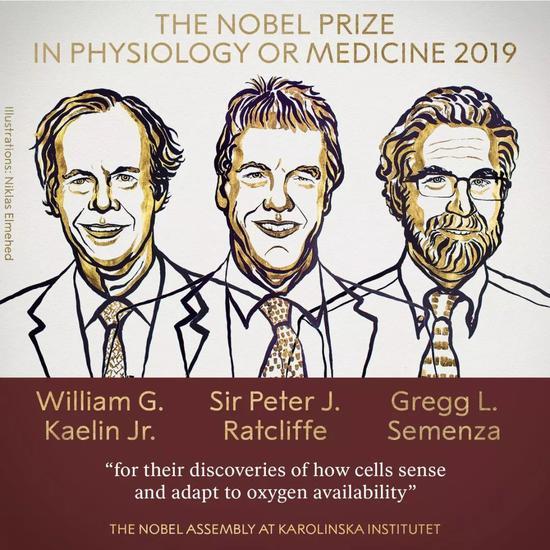 诺贝尔医学奖获得者,对细胞如何感知氧气的深刻发现