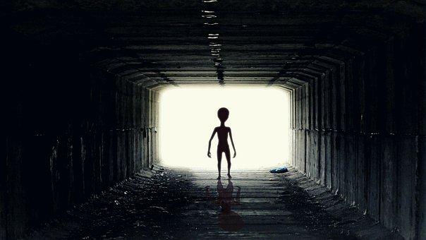 也许外星人就在我们身边,只是我们看不到而已